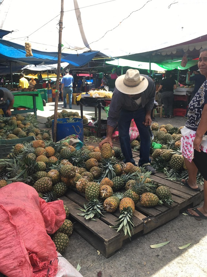 Tegucigalpa, uomo, ananas